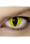 "Effekt Kontaktlinse ""Katzenauge gelb"" (inkl. Pflegemittel + Linsenbehälter)"